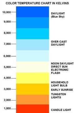 what is the best led light color temperature