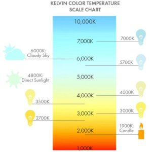 bulb color temperature