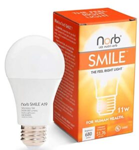 light bulbs closest to natural light