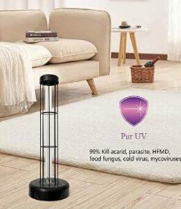 uv light for home disinfection