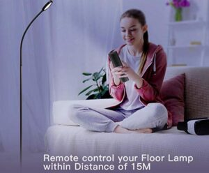 Full Spectrum lamp with remote and touch control
