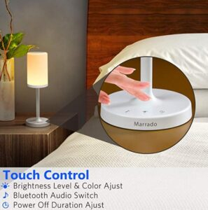 Touch smart desk lamp for night table