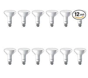 Philips warm white led flood lights for home