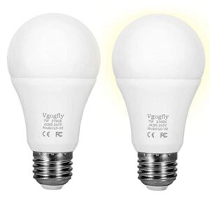 dusk to dawn led outdoor light bulb 2 pack