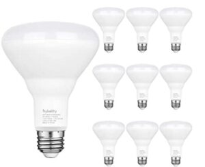 indoor and outdoor recessed flood light bulb