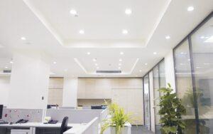 best indoor light bulbs reviews