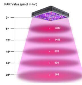 full spectrum light bulbs for indoor plants