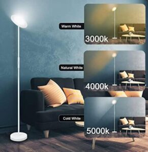 tall standing floor lamp with eye-care light for office