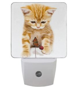 strong plastic plug in night light with dusk to dawn sensor for cats