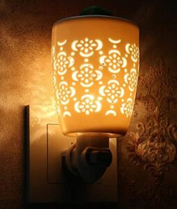 led plug in night light with hollow shade