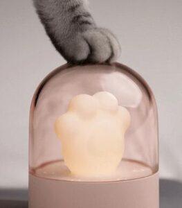 do cats need light at night