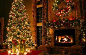 christmas tree spotlight indoor